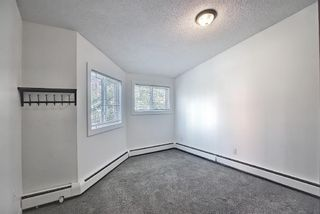 Photo 20: 11 711 3 Avenue SW in Calgary: Downtown Commercial Core Apartment for sale : MLS®# A1125980