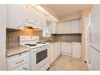 """Photo 7: 145 3665 244 Street in Langley: Otter District Manufactured Home for sale in """"Langley Grove Estates"""" : MLS®# R2346294"""
