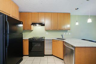 Photo 9: 111 35 Richard Court SW in Calgary: Lincoln Park Apartment for sale : MLS®# A1068844