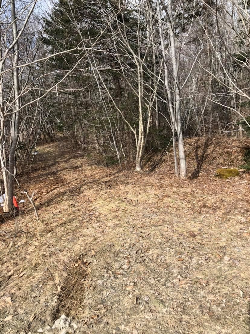 Main Photo: Lot Lighthouse Road in Bay View: 401-Digby County Vacant Land for sale (Annapolis Valley)  : MLS®# 202104918
