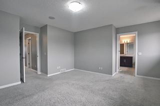 Photo 29: 6 Redstone Manor NE in Calgary: Redstone Detached for sale : MLS®# A1106448