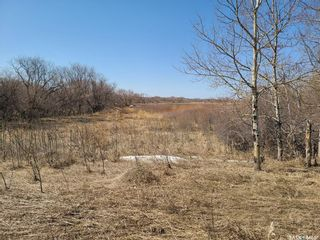 Photo 38: Abrey Acreage in Tisdale: Residential for sale : MLS®# SK851060