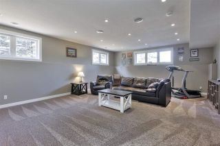 Photo 31: 5 52208 RGE RD 275: Rural Parkland County House for sale : MLS®# E4248675