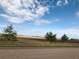 Photo 10: RR 255 & HWY 37: Rural Sturgeon County Rural Land/Vacant Lot for sale : MLS®# E4244134