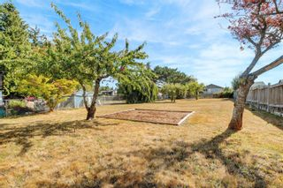 Photo 19: 3253 Wascana St in : SW Gorge House for sale (Saanich West)  : MLS®# 885957