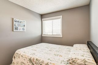 Photo 30: 274 Fresno Place NE in Calgary: Monterey Park Detached for sale : MLS®# A1149378