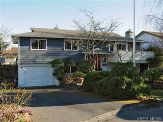 Photo 18: 4021 Hessington Pl in VICTORIA: SE Arbutus House for sale (Saanich East)  : MLS®# 693379