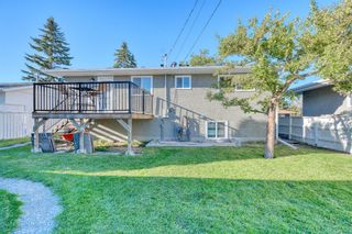 Photo 43: 719 ALLDEN Place SE in Calgary: Acadia Detached for sale : MLS®# A1031397