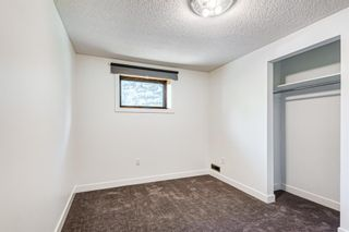 Photo 40: 204 Dalgleish Bay NW in Calgary: Dalhousie Detached for sale : MLS®# A1144517