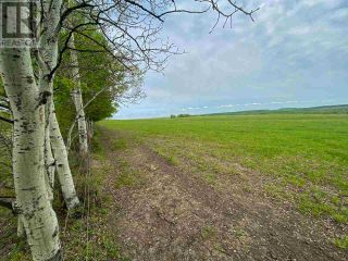 Photo 27: 15166 BUICK CREEK ROAD in Fort St. John (Zone 60): Agriculture for sale : MLS®# C8030416