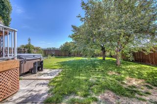 Photo 38: 44 DEERMOSS Crescent SE in Calgary: Deer Run Detached for sale : MLS®# A1018269