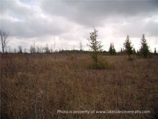 Photo 10: 2489 Concession Road 3 Road in Ramara: Brechin Property for sale : MLS®# X3371303
