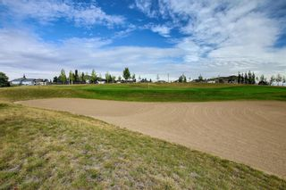 Photo 43: 150 Speargrass Crescent: Carseland Detached for sale : MLS®# A1146791