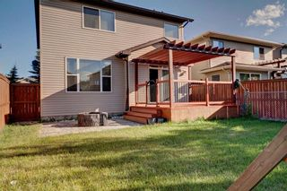 Photo 31: 279 CHAPALINA Terrace SE in Calgary: Chaparral House for sale : MLS®# C4128553