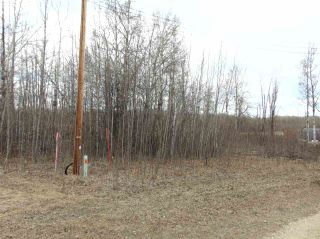 Photo 1: 81 15065 TWP RD 470: Rural Wetaskiwin County Rural Land/Vacant Lot for sale : MLS®# E4240270