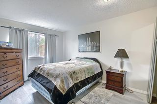 Photo 17: 119 333 Garry Crescent NE in Calgary: Greenview Apartment for sale : MLS®# A1139361