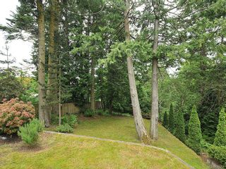 Photo 19: 423 Creed Pl in View Royal: VR Hospital House for sale : MLS®# 619958