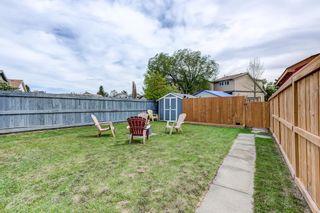 Photo 34: 3613 44 Avenue in Edmonton: Zone 29 House for sale : MLS®# E4246393