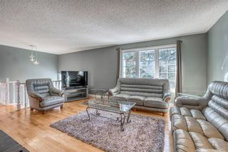 Photo 8: 543 Lake Newell Crescent SE in Calgary: Lake Bonavista Detached for sale : MLS®# A1081450