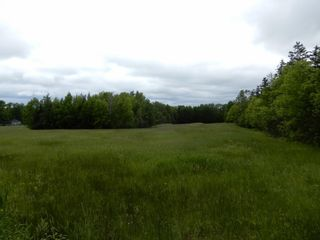 Photo 3: River John Road in Scotch Hill: 108-Rural Pictou County Vacant Land for sale (Northern Region)  : MLS®# 202115411