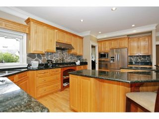Photo 12: 2125 138A Street in Surrey: Elgin Chantrell House for sale (South Surrey White Rock)  : MLS®# F1320122