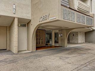 Photo 21: LA JOLLA Condo for rent : 1 bedrooms : 2510 TORREY PINES RD #312