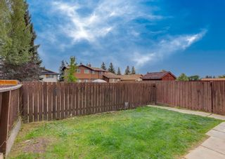 Photo 29: 228 Berwick Drive NW in Calgary: Beddington Heights Semi Detached for sale : MLS®# A1137889