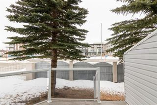 Photo 41: 88 Scenic Gardens NW in Calgary: Scenic Acres Semi Detached for sale : MLS®# A1074167