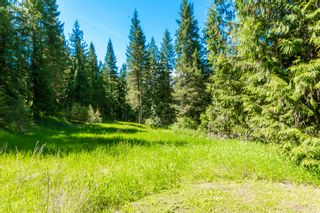 Photo 19: 3977 Myers Frontage Road: Tappen House for sale (Shuswap)  : MLS®# 10134417