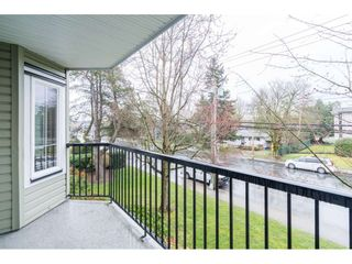 Photo 19: 211 20881 56 Avenue in Langley: Langley City Condo for sale : MLS®# R2553025