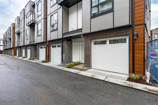 """Photo 36: 31 19760 55 Avenue in Langley: Langley City Townhouse for sale in """"TERRACES 3"""" : MLS®# R2590652"""