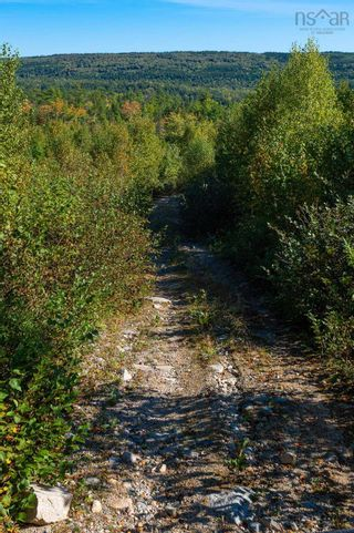 Photo 6: 2014 Myra Road in Porters Lake: 31-Lawrencetown, Lake Echo, Porters Lake Vacant Land for sale (Halifax-Dartmouth)  : MLS®# 202125407