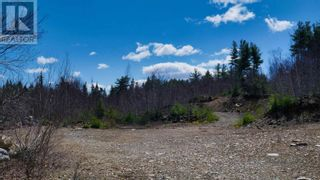 Photo 10: acreage 930 Road in Buckfield: Vacant Land for sale : MLS®# 202108244