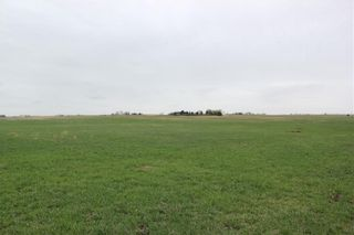 Photo 1: On Highway 567 in Rural Rocky View County: Rural Rocky View MD Land for sale : MLS®# C4233359