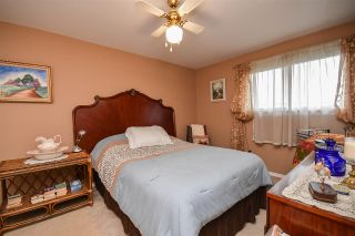 Photo 21: 173 Arklow Drive in Dartmouth: 15-Forest Hills Residential for sale (Halifax-Dartmouth)  : MLS®# 202021896