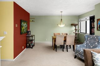 Photo 4: 202 3900 Shelbourne St in : SE Cedar Hill Condo for sale (Saanich East)  : MLS®# 866490