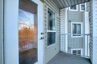 Photo 14: 3225 6818 Pinecliff Grove NE in Calgary: Pineridge Apartment for sale : MLS®# A1053438
