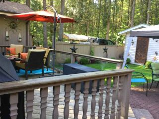 Photo 15: 640 MOUNTAIN VIEW ROAD: Cultus Lake House for sale : MLS®# R2234381
