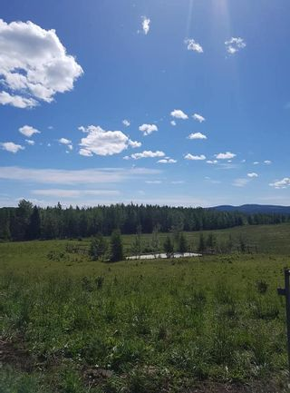 Photo 8: 23200 S MCBRIDE TIMBER Road in Prince George: Upper Mud House for sale (PG Rural West (Zone 77))  : MLS®# R2354955