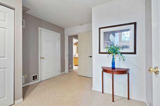 Photo 22: 10 Pheasant Court: Orangeville House (Bungalow-Raised) for sale : MLS®# W5354287