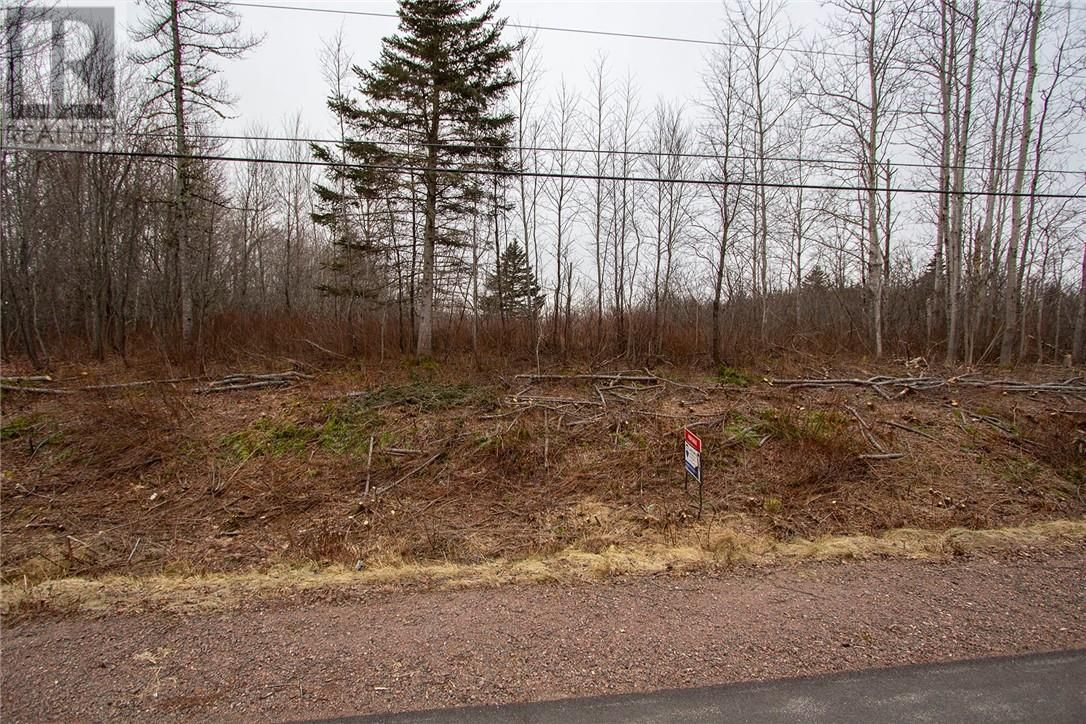 Main Photo: Lot 84-2 Walker RD in Sackville: Vacant Land for sale : MLS®# M123786