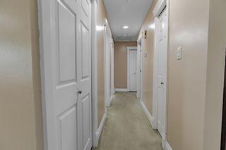 Photo 16: 4011 19 Avenue in Edmonton: Zone 29 House for sale : MLS®# E4248497
