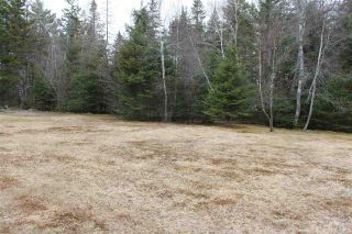 Photo 6: Lot 4 Miller Road in Devon: 30-Waverley, Fall River, Oakfield Vacant Land for sale (Halifax-Dartmouth)  : MLS®# 202007244