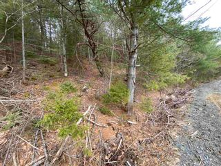 Photo 13: Lot 7 Lower Grant Road in Chester Basin: 405-Lunenburg County Vacant Land for sale (South Shore)  : MLS®# 202110749