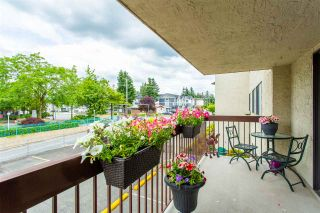 "Photo 27: 231 31955 OLD YALE Road in Abbotsford: Abbotsford West Condo for sale in ""EVERGREEN VILLAGE"" : MLS®# R2477163"