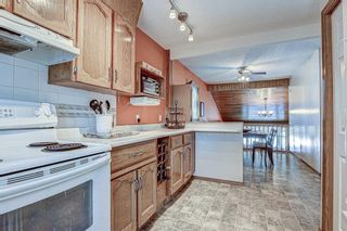 Photo 11: 311 Lynnview Way SE in Calgary: Ogden Detached for sale : MLS®# A1073491