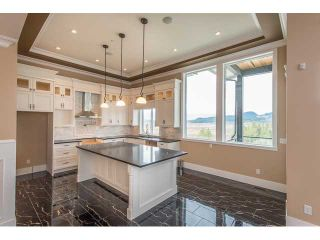 """Photo 51: 22699 136A Avenue in Maple Ridge: Silver Valley House for sale in """"FORMOSA PLATEAU"""" : MLS®# V1053409"""