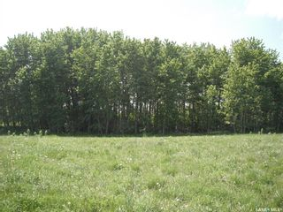 Photo 2: 12 Crescent Bay Rd, Cameron Lake (Mont Nebo) in Canwood: Lot/Land for sale (Canwood Rm No. 494)  : MLS®# SK849926