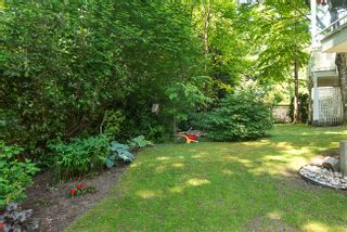 Photo 29: 3355 FLAGSTAFF PLACE in Vancouver East: Champlain Heights Condo for sale ()  : MLS®# V1123882