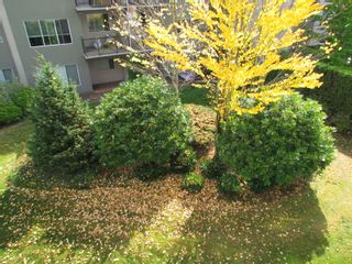 """Photo 19: #321 32725 GEORGE FERGUSON WY in ABBOTSFORD: Abbotsford West Condo for rent in """"UPTOWN"""" (Abbotsford)"""